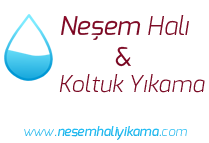 nesem-hali-yikama-logo
